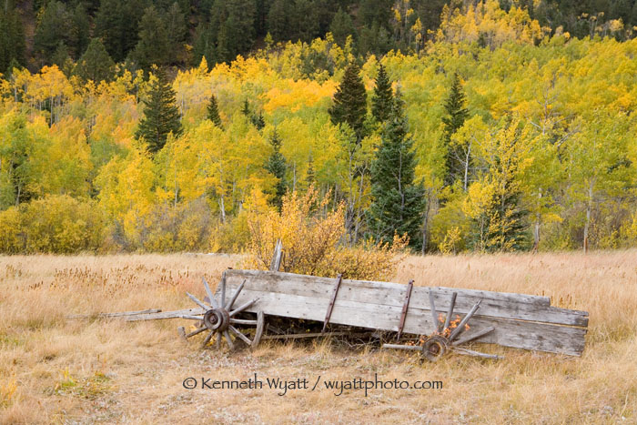 fall color, wagon, Ashcroft, Aspen, Colorado photo