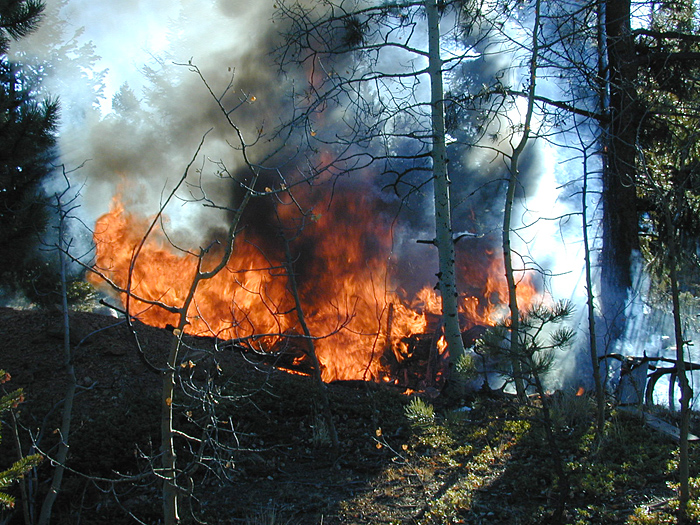 fire, Woodland Park, wildland fire, controlled burn photo