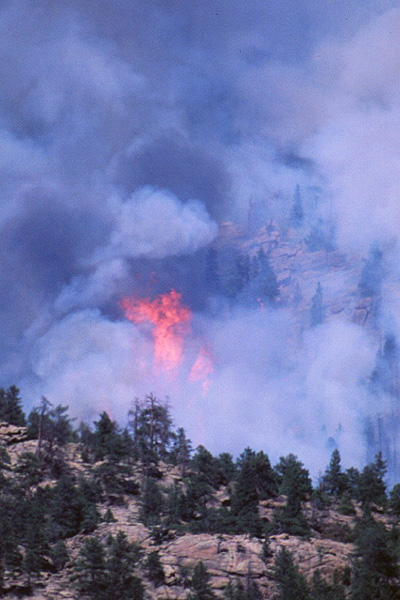 fire, Hayman Fire, Colorado, wildland fire, Kenneth Wyatt photo
