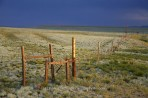 fence, prairie, Colorado, Crested Butte