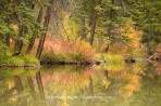 Lizard Lake, Colorado, reflection, fall color