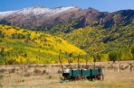 fall color, Colorado, wagon, Cripple Creek